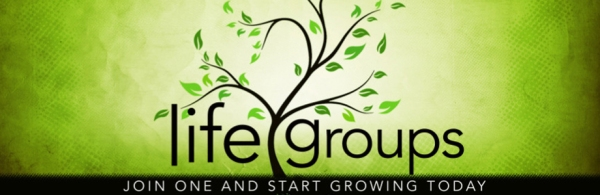 Life-Groups